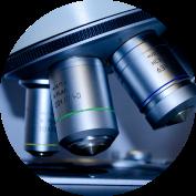 Antibody for diagnotic